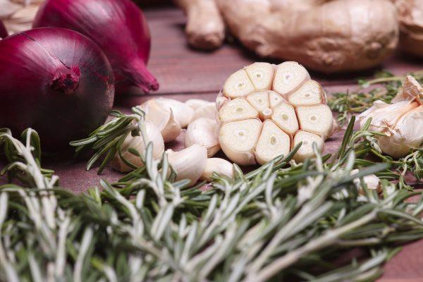 Prebióticos: alimentando a nuestras bacterias